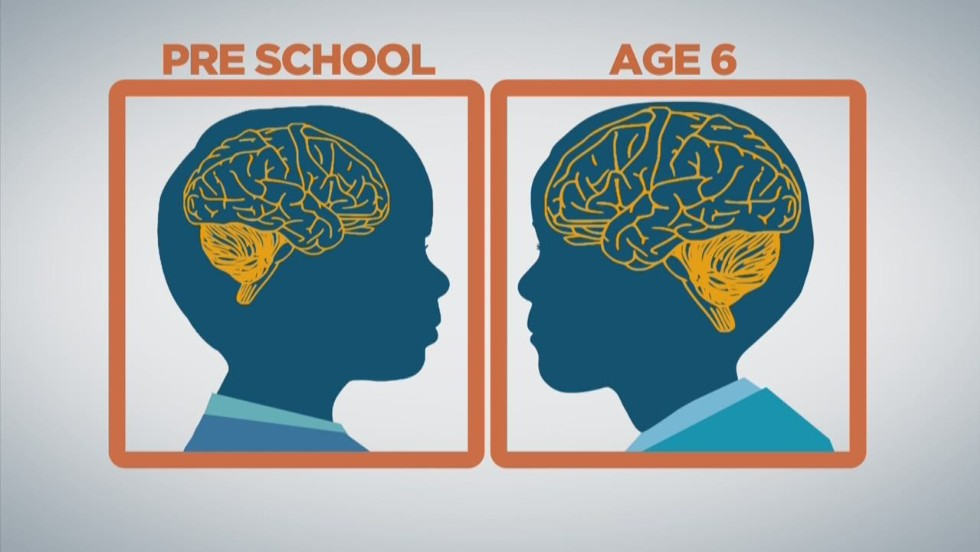 Youre An Adult But Your Brain Might Not Be