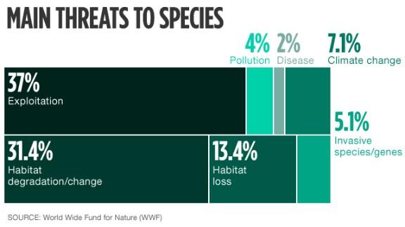 Main threats to wildlife