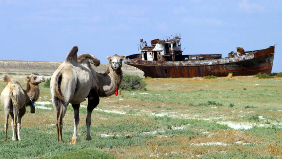 Image result for dried aral sea