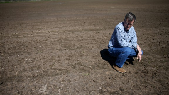 Ronald Gertson, a rice farmer, looks over his drought-stricken rice field.The lakes in central Texas are only 38% full.
