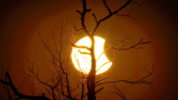 Tree branches are silhouetted against the sun during the partial eclipse as seen from Paynes Prairie in Gainesville.