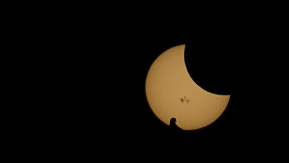 The silhouette of a bird rests in the foreground of the partial solar eclipse seen in Keller, Texas.
