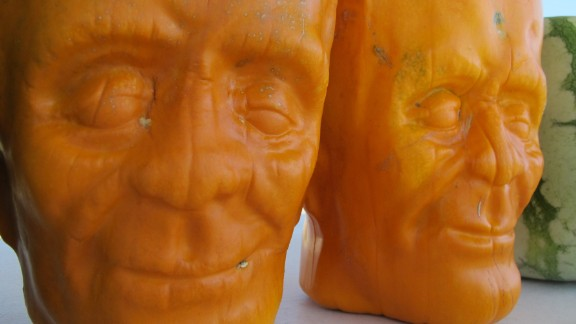 Dighera predicts a 90% success rate next year, totaling some 40,000 pumpkinsteins.