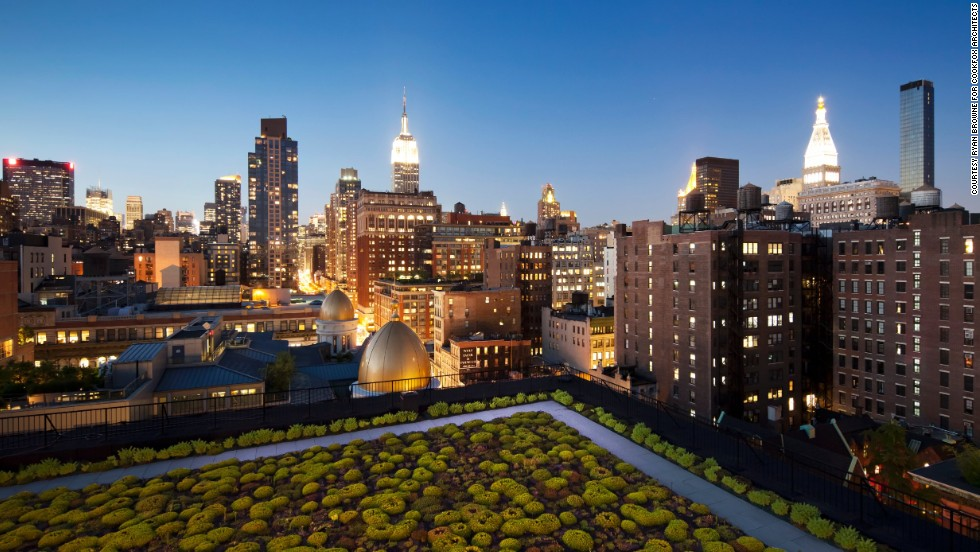New York architects COOKFOX installed a green roof at their offices in Manhattan. They say it breaks up the urban backdrop of tall buildings and densely packed vehicles. It is also visible from the workplace drawing the outside environment into the sightline of workers, helping to mark the changing seasons and the time of day.