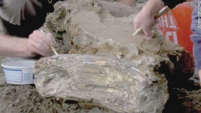 pkg mammoth fossil found in idaho_00001120.jpg