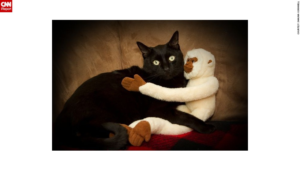 "Shauna Cornwell's black cat <a href=""http://ireport.cnn.com/docs/DOC-1181954"">Mac</a> ""loves cuddles, whether it be with our other cat Charlie, people or, in this picture, a stuffed monkey."""