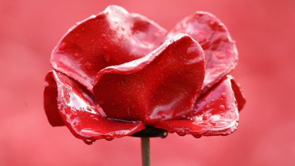 The poppy is worn in Britain to commemorate those who have fallen while fighting for the country.