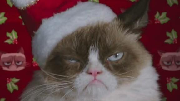 grumpy cat christmas movie orig mg_00001413.jpg