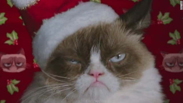 Grumpy Cat starring in Christmas movie