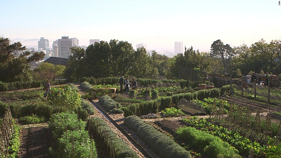 This rooftop farm in Cape Town, South Africa, was built by a non-profit micro-farming organization called Abalimi and aims to provide crops for underprivileged groups and communities.