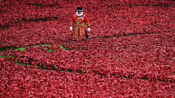A Yeoman Warder stands amongst the ceramic poppies at the Tower of London