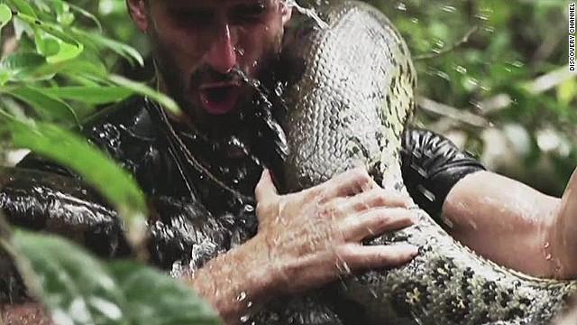 anaconda video picture
