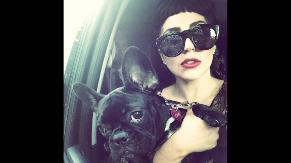 """Pop star Lady Gaga and a four-legged friend take a photo together on Wednesday, July 9. """"It's time to Party in Toronto,"""" <a href=""""http://instagram.com/p/qP-0iXpFK9/?modal=true"""" target=""""_blank"""" target=""""_blank"""">she wrote on Instagram.</a> """"I have had the BEST time here."""""""