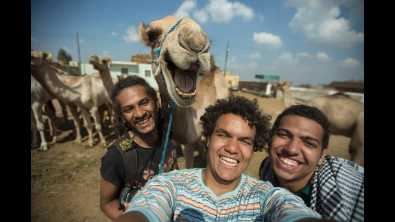 """Hossam Antikka and his friends, plus a camel, <a href=""""https://www.facebook.com/antikkaphotography/photos/a.332499480165108.76782.267039226711134/696733237075062/"""" target=""""_blank"""" target=""""_blank"""">smile for a selfie</a> in Giza, Egypt, on Wednesday, October 1."""