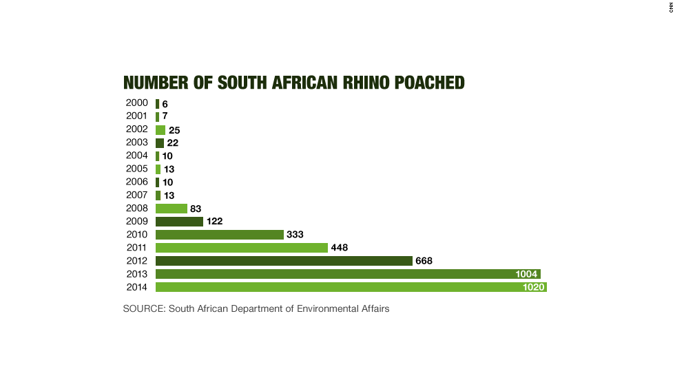 number of South African rhino poached