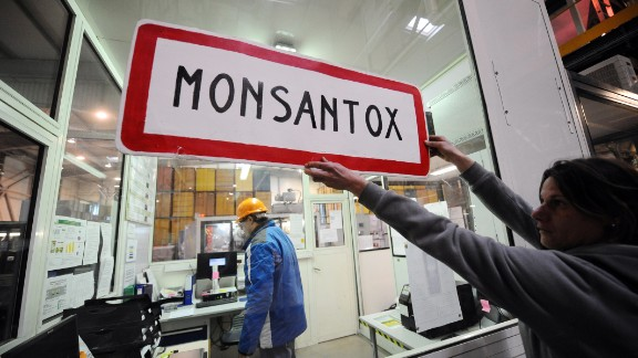 Few companies are less popular than Monsanto, with fierce attacks on its environmental impact, but the agriculture firm remains enormously successful.