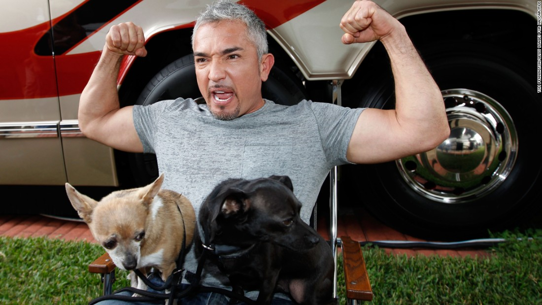 "No one's safe when it comes to Internet death hoaxes, and that includes popular dog trainer Cesar Milan. After erroneous reports that Milan had died erupted in early December 2014, <a href=""http://instagram.com/p/wJsmhWuXQ3/"" target=""_blank"">he posted a rebuttal on Instagram</a>, assuring his fans that he was ""safe, happy and healthy."""
