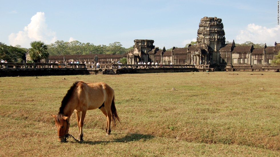 "A horse grazes in front of the ancient Khmer landmark of <a href=""http://ireport.cnn.com/docs/DOC-1032856"">Angkor Wat</a> in Siem Reap, Cambodia."