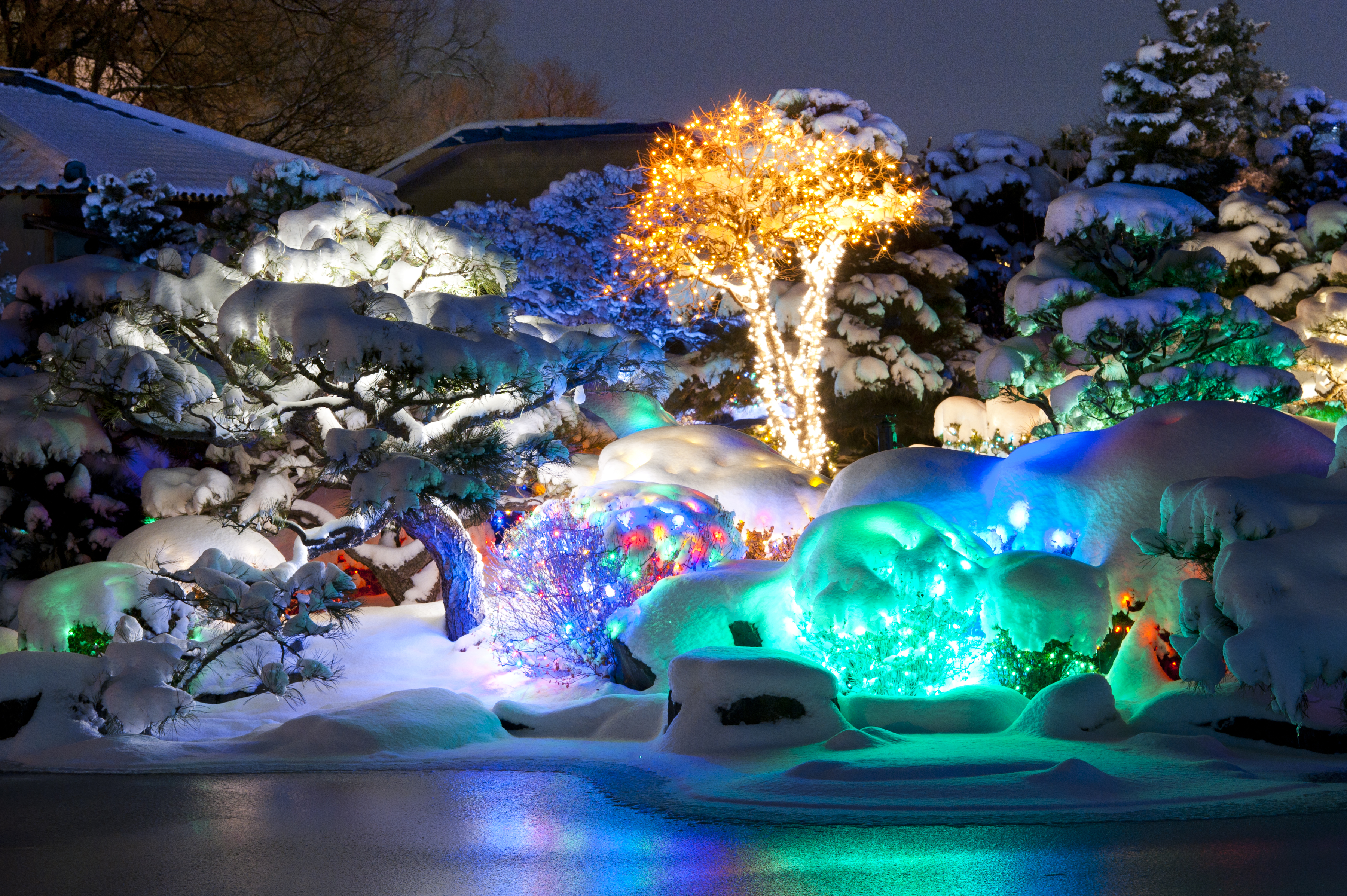 7 best places to see christmas lights in the usa cnn travel - Christmas Lights In Denver