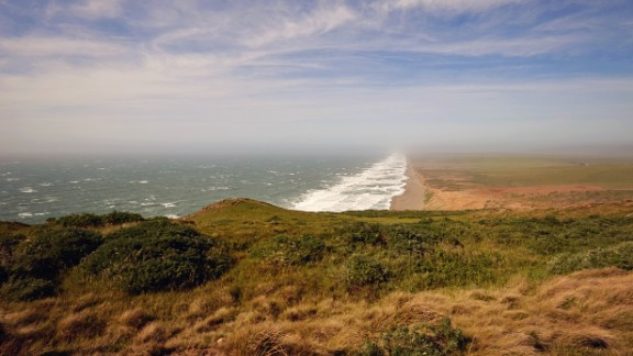"Independence, reclaimed:  After two years of loss and change, Tiffany Cecil took a West Coast holiday by herself. Sand flew in her face as she watched the crashing surf at Point Reyes National Seashore in California. ""Even when you feel like your world is crashing down around you, there"