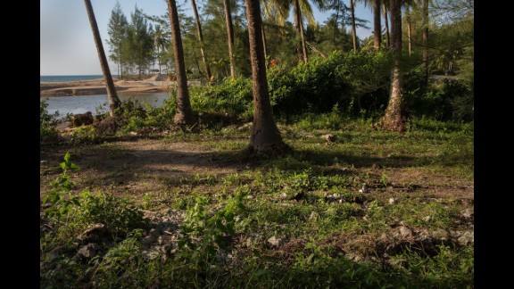 Trees stand devastated by the tsunami 10 years ago. The Theptharo Resort has not been rebuilt and rubble is still strewn throughout the new forest growth.