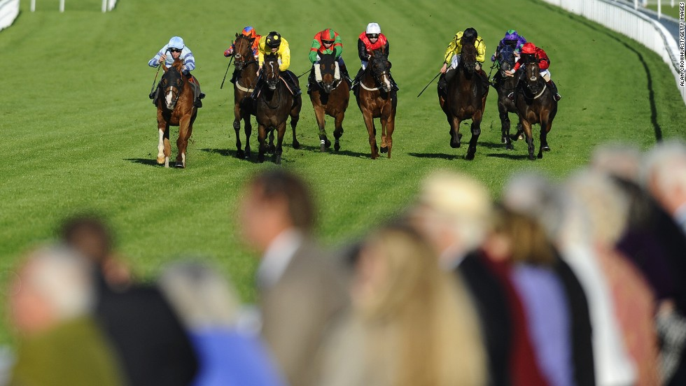 Horse racing began at Goodwood in 1802.