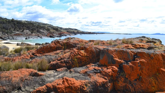 "Lichen-tainted rocks at Spikey Beach in Tasmania, Australia, ""paint the world in peaceful orange,"" writes Steven Kemp, a retired air traffic controller. ""In a world of turmoil, orange can be meditative."""