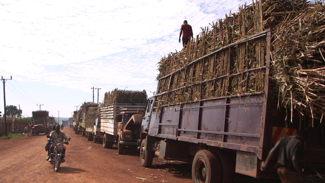 Sugar is big business in Uganda. These trucks loaded with sugar cane are heading for the factories of Kakira Sugar Limited -- one of the east-central African country's oldest and largest sugar companies.