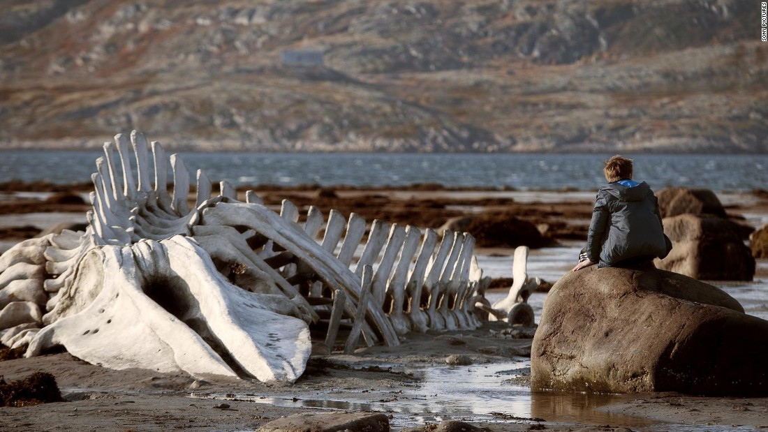 "<strong>Best foreign language film: </strong>""Leviathan"" (Russia)"