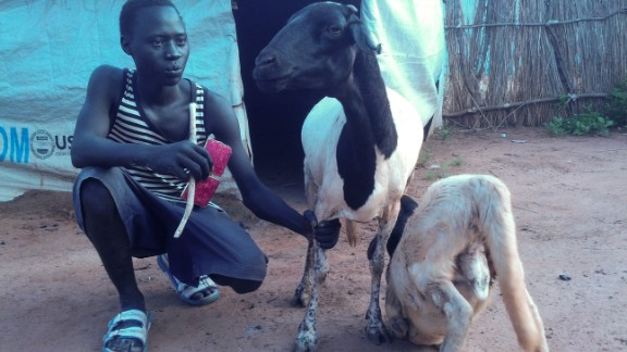 """<br />""""My name is James Bond, and I'm from South Kordofan, a state with beautiful resources. I am 17, and I am only here in South Sudan because the war displaced me from home. I decided to keep this sheep in hopes that it will produce two or four or more, so that I can get married. Even though I live alone, it's no problem for me. As the book of Ecclesiastes says, there is time for everything."""""""