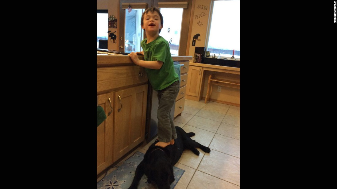 "PETA criticized Sarah Palin in January after she posted this photo of her 6-year-old son, Trig, stepping on a family dog to reach the kitchen sink. ""Dear PETA,"" Palin responded via Facebook. ""Chill. At least Trig didn't eat the dog."""