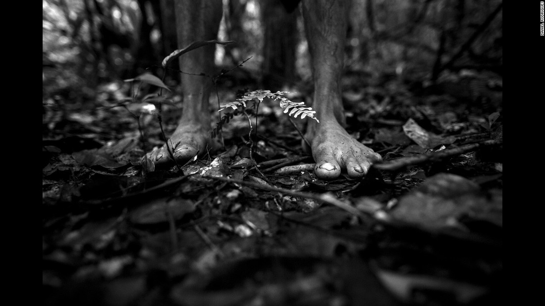 """We walked and walked for hours, slashing through the forest overgrowth to look for the prey,"" Rodrigues recalled. ""The Awa were barefoot the whole time."""