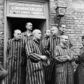08 auschwitz - RESTRICTED