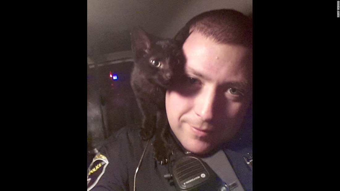"The Idaho State Police<a href=""https://twitter.com/IdahoStPolice/status/560067507265220608/photo/1"" target=""_blank""> tweeted this ""#kittyselfie""</a> early on Tuesday, January 27: ""Trooper Acheson rescued this little guy from the highway in the ‪#TwinFalls area early this morning."""