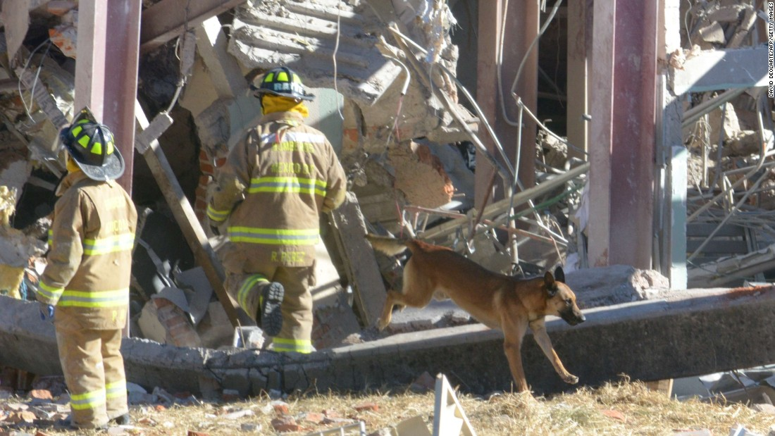 Rescuers and their dogs search the wreckage. There are fears that people might be trapped in the debris.
