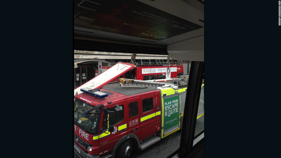 "A London bus ""collided with a tree"" while it was traveling down a road in the center of the city, according to London transport official Ken Davidson."