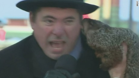 Groundhog bites mayor, then predicts an early spring