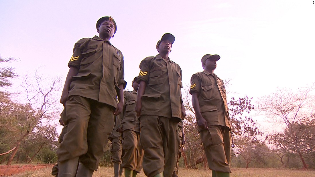 Ziwa Sanctuary employs 80 rangers to monitor the handful of resident rhinos 24 hours a day, seven days a week. They can shoot armed poachers on sight.