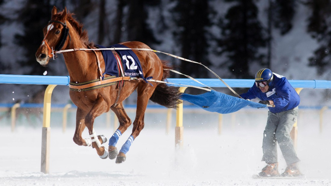 Competitors are pulled along by a horse, dog or, in some cases, motor vehicles while on skis over a variety of different courses.