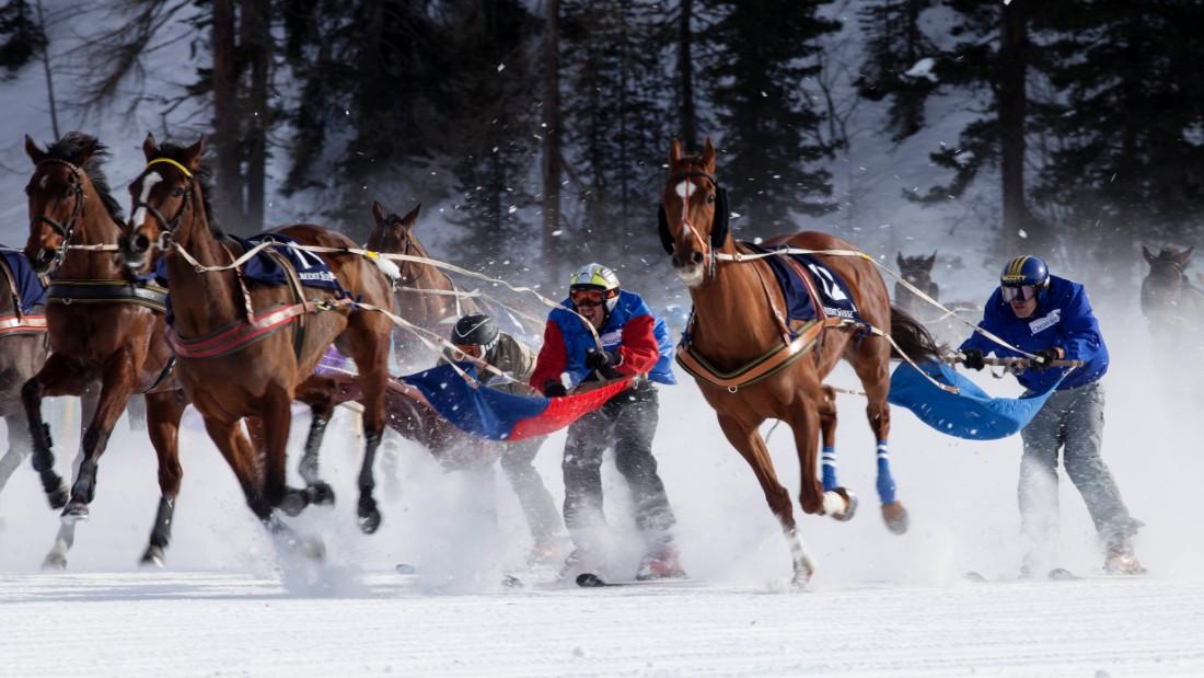 Equestrian dating ski jumping