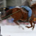 skijoring side view