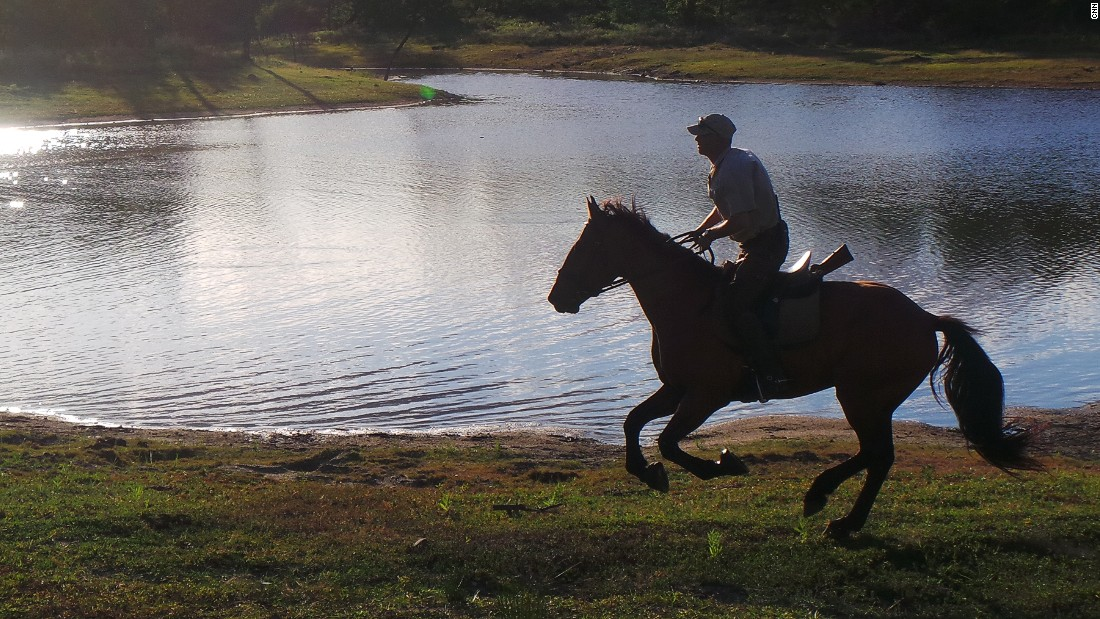 Going out on horseback allows visitors to explore game reserves to the full. Kusseler has around 35,000 hectares of game reserve to ride around with a variety of terrain including lakes, rivers, woodlands and hills.