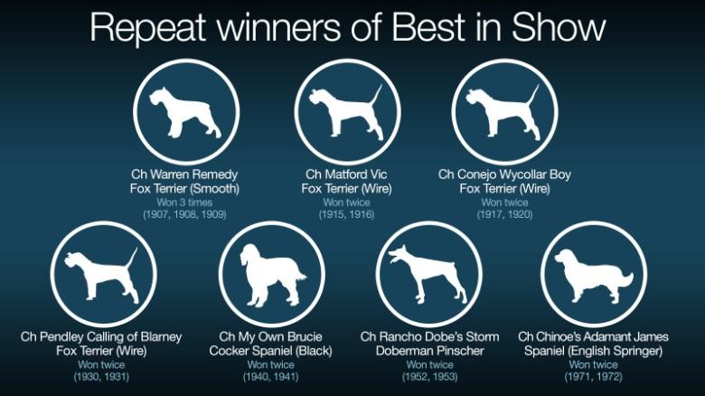 Westminster Dog Show: A brief history - CNN