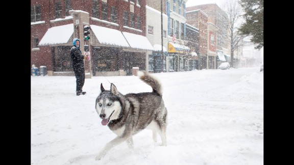 A dog named Ajax prances around the snow-packed, deserted streets of downtown Paducah, Kentucky, on February 16.