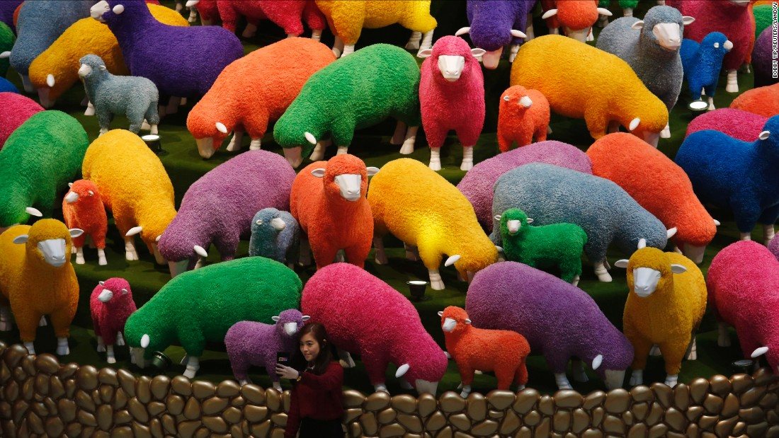 "A woman at a Hong Kong shopping mall takes a selfie in front of colored sheep on Friday, February 13. It was a display for the upcoming <a href=""http://www.cnn.com/2015/02/08/asia/gallery/lunar-new-year-2015/index.html"" target=""_blank"">Lunar New Year,</a> which will welcome the Year of the Sheep."