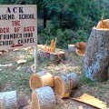 Maseno School Tree Logs