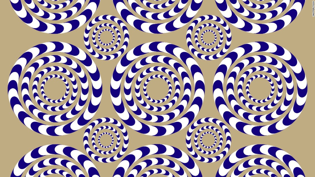 If you move your head while staring at these circles, they will appear to rotate or spin. But that movement is only an illusion.