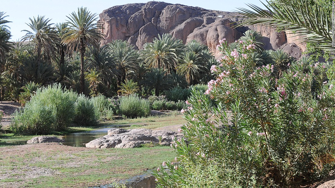 Outside Ouarzazate town lies the Fint Oasis. The lush greenery comes in sharp contrast with the desert plains, giving filmmakers easy access to multiple backdrop options.
