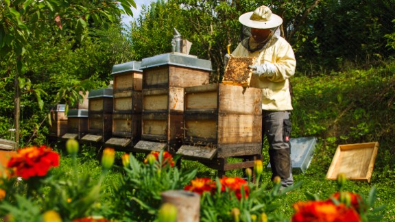 Buy local: Be on the lookout for local organically grown fruits, vegetables and honey that help support beekeepers in your area.