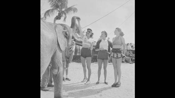 People stand near a circus elephant during a rehearsal in Sarasota, Florida, in 1949.